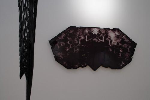 Výstava | Federico Díaz — ADHEZE Manuál pro přežití Kapitola 1.1 (5.12. 17 06:40:14)