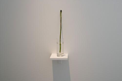 Exhibition | Jiří Kovanda: Golden Ring | 29. 5. –  28. 6. 2008 | (5.12. 17 19:12:59)