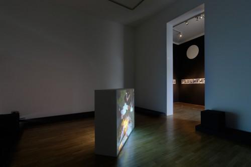 Exhibition | Rafani | 3. 4. –  19. 4. 2008 | (5.12. 17 19:27:24)