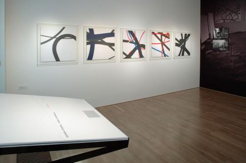 Výstava | Zdeněk Sýkora, Lenka Sýkorová – Létání | 24. 1. –  22. 3. 2008 | (5.12. 17 19:33:40)