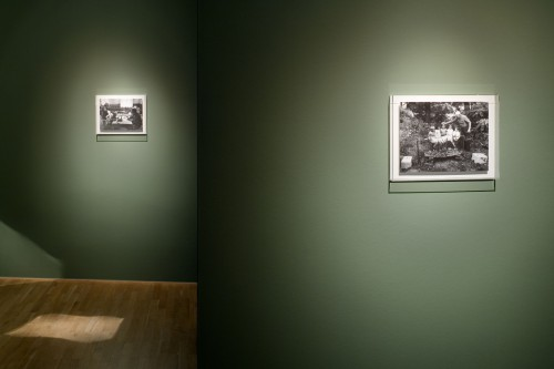Výstava | Poděkování Jindřichu Štreitovi | 9. 5. 2006 | (8.12. 17 18:47:00)
