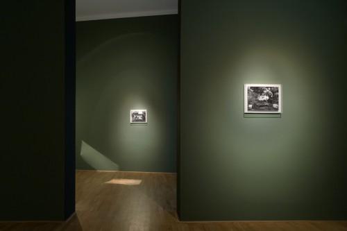 Výstava | Poděkování Jindřichu Štreitovi | 9. 5. 2006 | (8.12. 17 18:46:48)