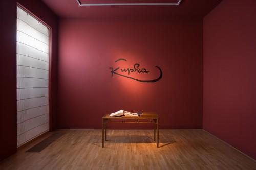 Výstava | František Kupka – Člověk a Země | 15. 7. –  6. 8. 2005 | (8.12. 17 19:13:08)