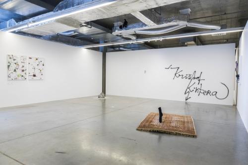 Výstava   Krištof Kintera – We All Want To Be Cleaned   28. 6. –  21. 10. 2018   (23.9. 21 15:26:45)