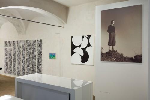 Exhibition | Zdeněk Sýkora: My Nature | 5. 2. –  28. 4. 2019 | (7.5. 19 00:38:46)